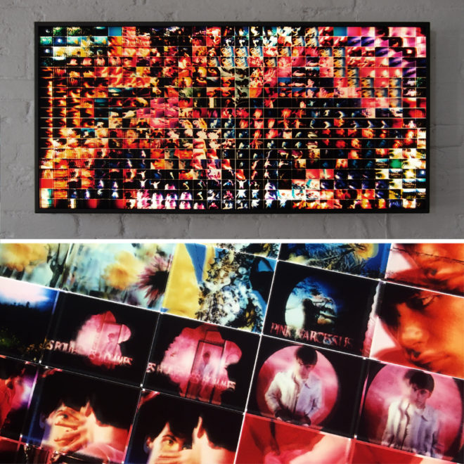 Mini-Cinema Lightbox - Pink Narcissus Selection 22x46 Grid - Light Art by Hugo Cantin