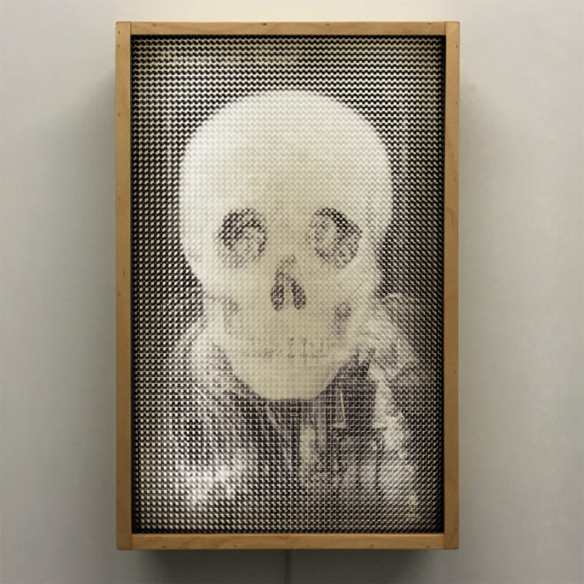 1910s Metamorphic Skull - Pixelated Optical Illusion - 18x12 Lightbox by Mini-Cinema