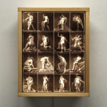 Calavas Mixed Gender Nude Study - Stock Card Erotica - 11x9 Lightbox by Mini-Cinema