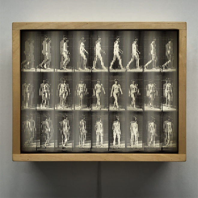 Muybridge Woman Walking Animation Cycle - Op Art 9x11 Led Lightbox by Mini-Cinema