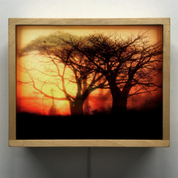 Safari Africa Travelogue Savanna Sunset on Fire - 9x11 Lightbox by Mini-Cinema