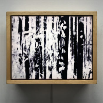 Snowy Forest - 9x11 Lightbox by Mini-Cinema / Hugo Cantin